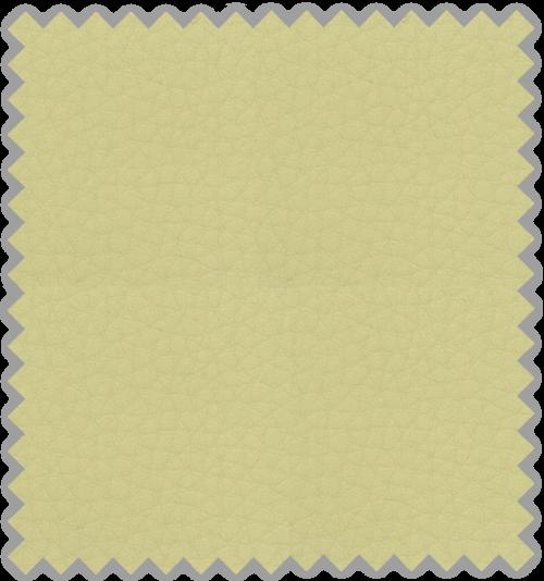 Bisonte C-102