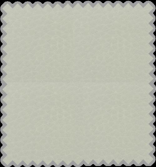Bisonte C-106