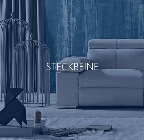 Steckbeine